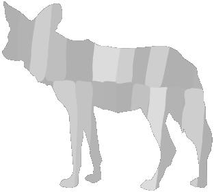 Painted Dog Research